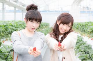 苺をプレゼントする可愛い女の子2人